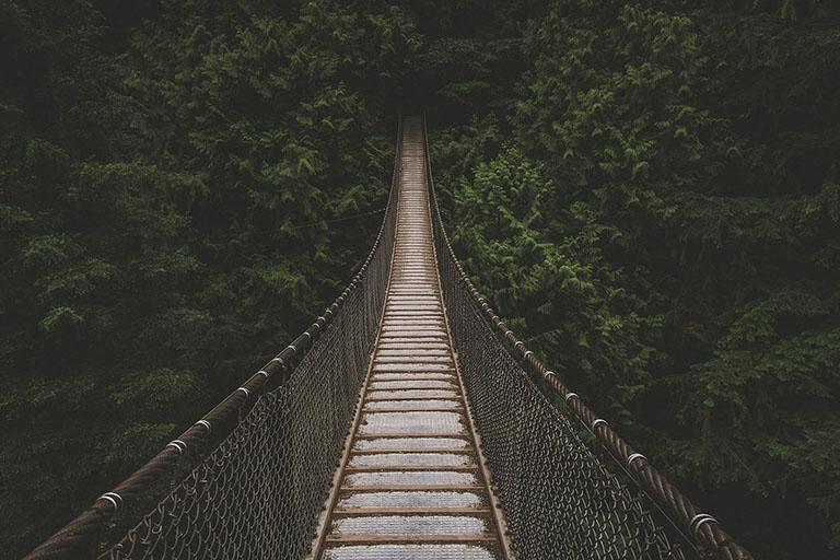 Costa Rica - Hanging Bridge