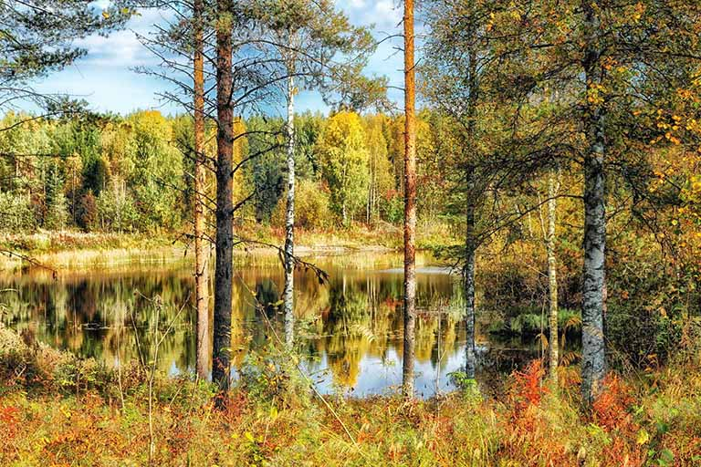 Finland Lapland - Oulanka National Park