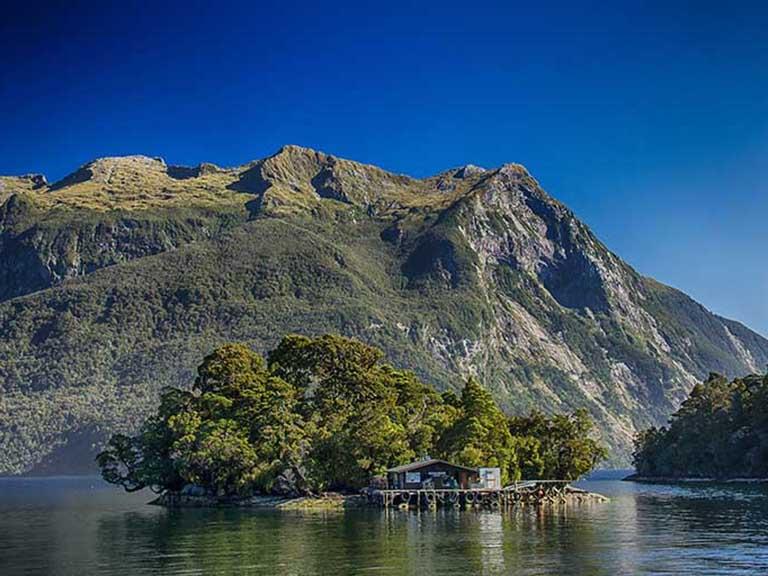 New Zealand - Doubtful Sound Cruise