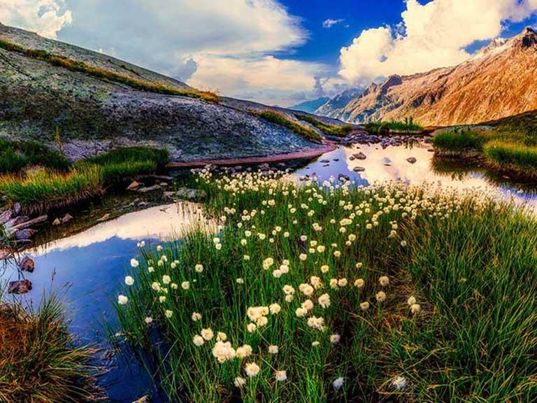 New Zealand - Fiordland National Park