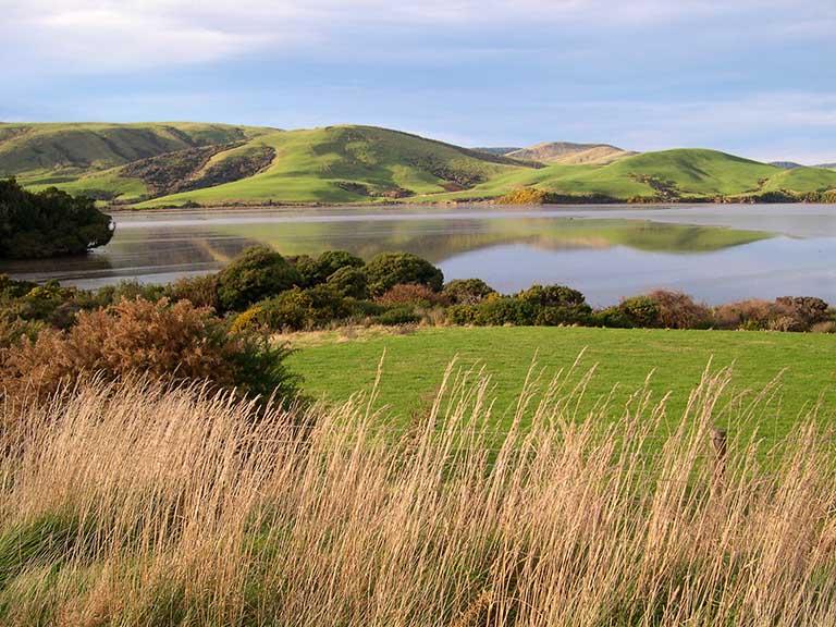 New Zealand - Catlins