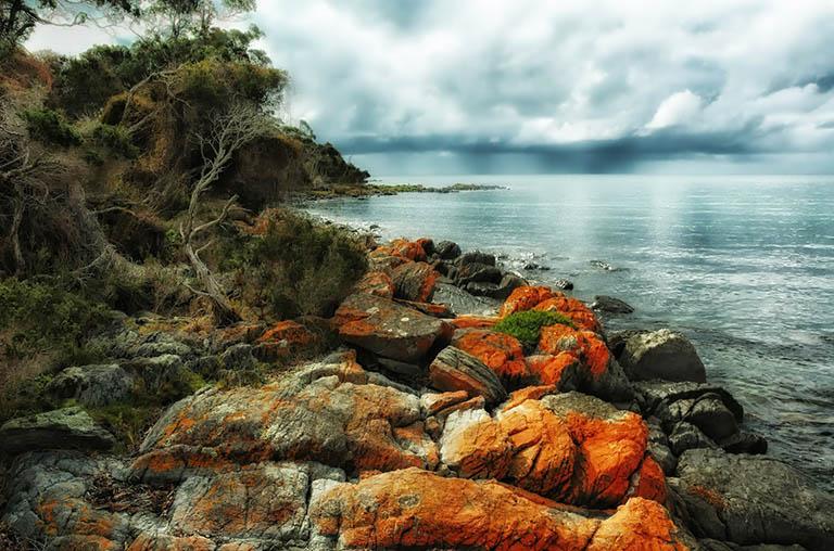 Australia - Tasmania - Bicheno