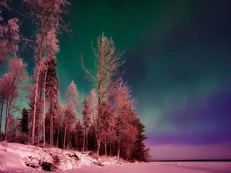 Lapland - Northern Lights Sky