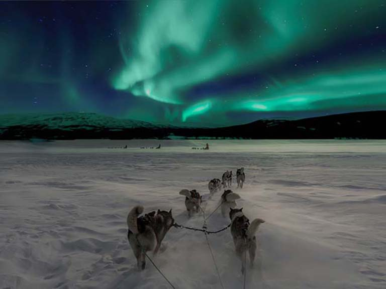 Finnish Lapland - Husky Sledding Aurora Adventure