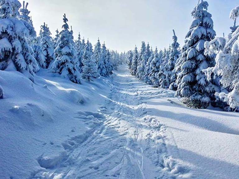 Lapland - Cross-Country Skiing
