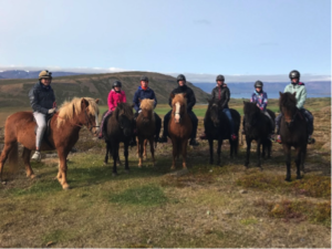 Iceland - Icelandic Horse riding